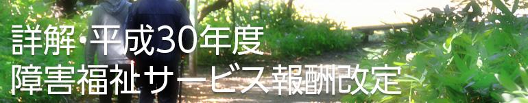 詳解・平成30年度障害福祉サービス報酬改定